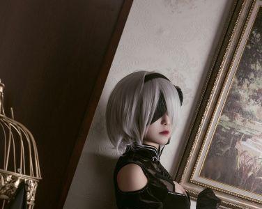 [Cosplay]穿旗袍的2B小姐姐 [45P]